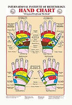 éflexologie palmaire