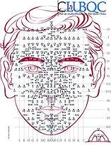 Carte réflexologie faciale