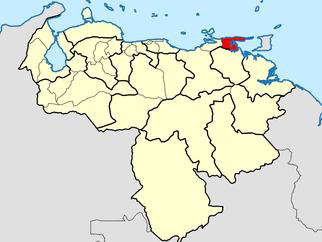Recogida de medicinas para Venezuela