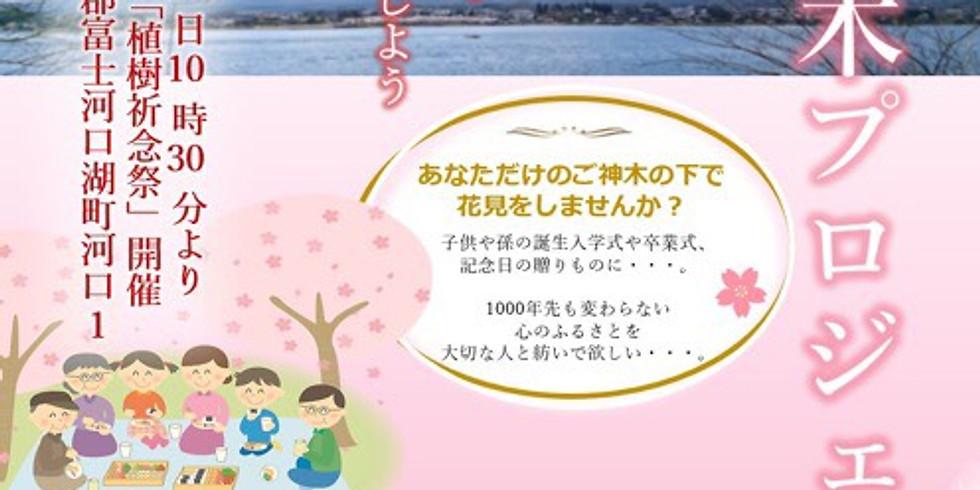 河口浅間神社桜なみ木プロジェクト