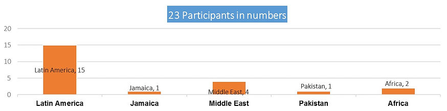 Participants in numbers.jpg