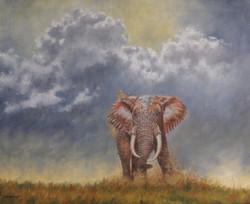 Kings of Africa - Lone Bull Elephant