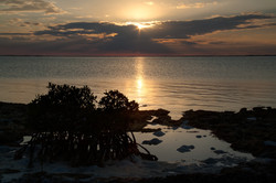 20110507_192749_3827_Andros