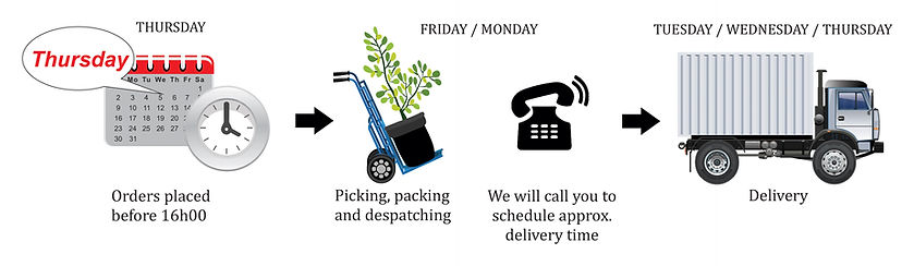 delivery,truck, tme, order, schedule, despatch, picking,packing, Western Cape