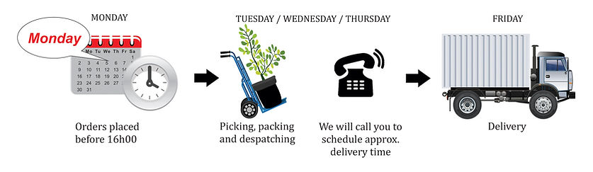 delivery,truck, tme, order, schedule, despatch, picking,packing, Jeffrey Bay, Easten Cape
