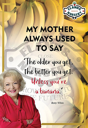Betty White Bananas.jpg
