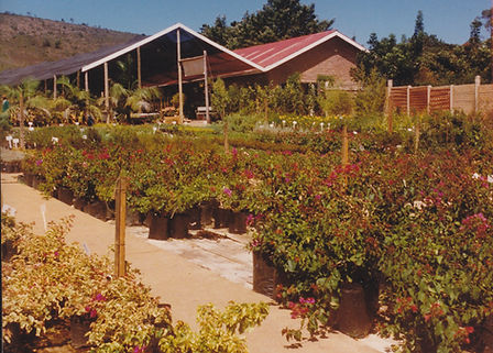 farm, Eland Nursery, business, Elands Valley, Plants, company, family, production