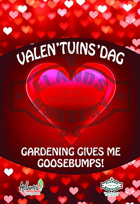 POS, poster, correx, board, branding, signage, display, information, happiness, buy, sale, garden, love, valentine, red,heart, goosebumps