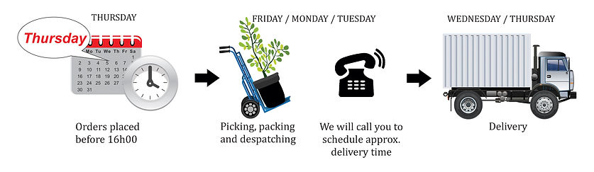 delivery,truck, tme, order, schedule, despatch, picking,packing, Gauteng