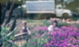 cmpany, Elands Nursery, Elands River, family