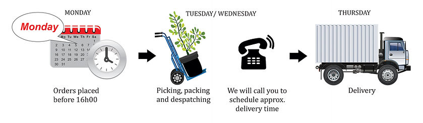 delivery,truck, tme, order, schedule, despatch, picking,packingNelson Mandela, Port Elizabeth