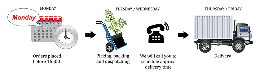 delivery,truck, tme, order, schedule, despatch, picking,packing, Garen Route, East London