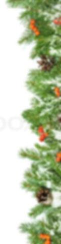 800px_COLOURBOX5382202_edited.jpg