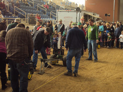 Action 2016 Pedal Tractor Pull