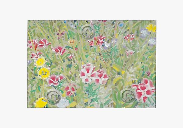 Chatsworth Wildflowers.jpg