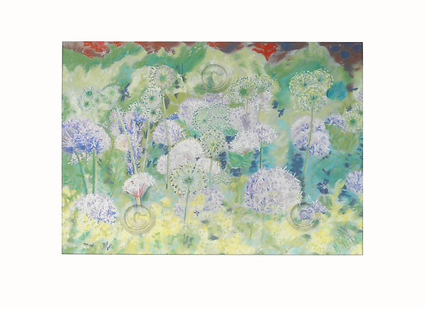 Chatsworth Allium pastel.jpg