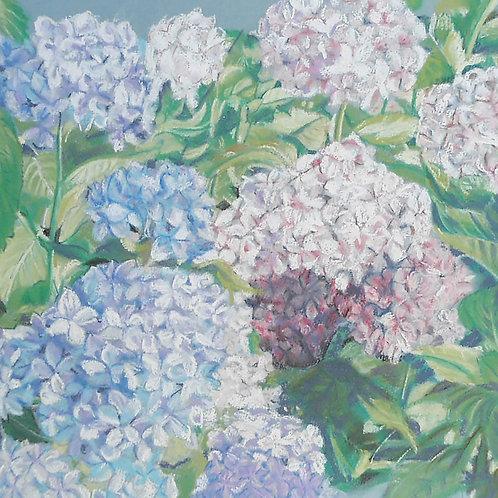 Pastel Hydrangea card
