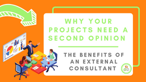 Why Your Projects Need a Second Opinion