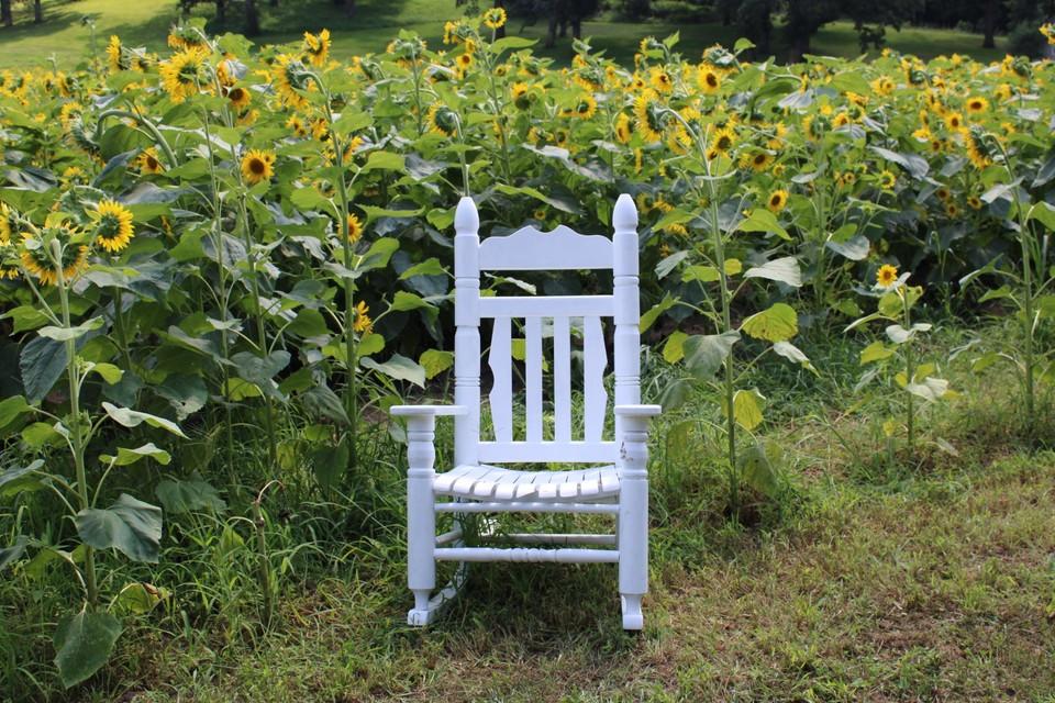sunflowerchair.jpg
