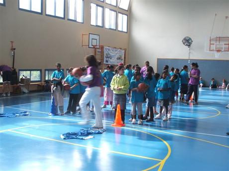 נידת כדורסל 019.jpg