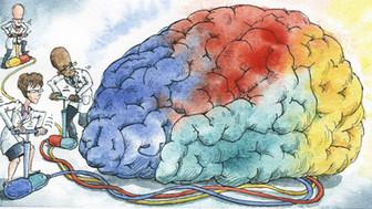 העצמה קוגניטיבית - מה עוצר אותנו?