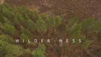 WECreate Wilder-ness