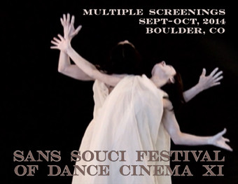 Guest curator of the International Sans Souci Festival of Dance Cinema