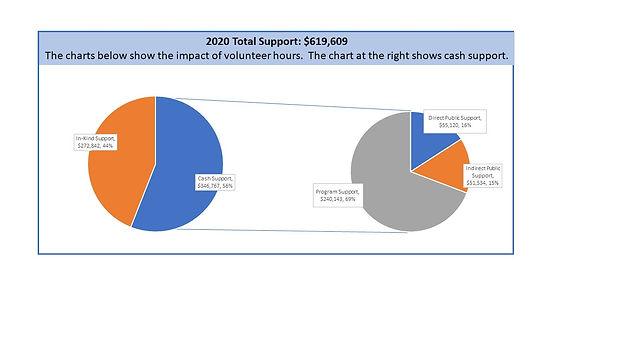 Revenue Graph 2020.JPG