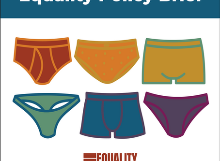 Equality Policy Brief: Week Six