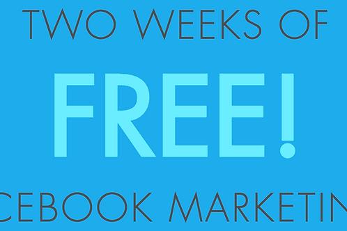 Two Weeks of FREE Facebook Marketing