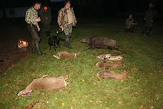 varer, jagtbilleder drivjagter 227.JPG