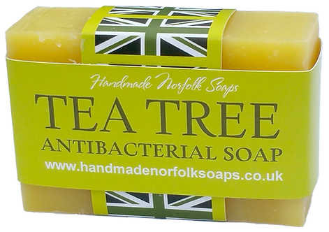 Antibacterial Tea Tree Soap