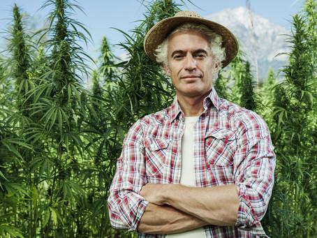 Yes, There is a Market for Hemp Fiber!