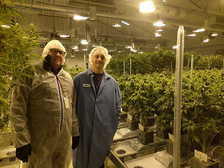 Friedland at a Canadian Grow Facility in