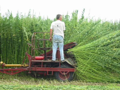 The USDA Rejects North  Dakota's Proposed Hemp Regulations