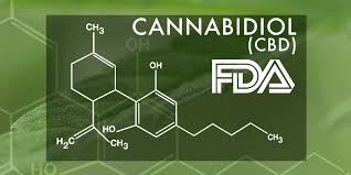 The FDA is in No Hurry to Establish a CBD Policy