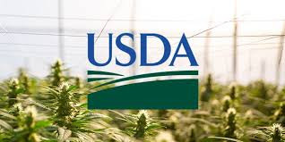 The USDA Has Now Approved 6 State and 7 Tribal Hemp Production Plans