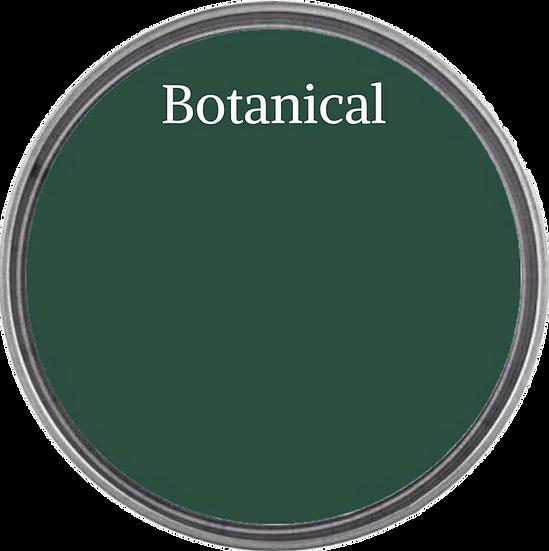 Chalk Synthesis Paint -Botanical