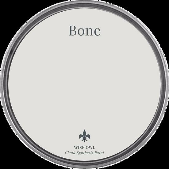 Chalk Synthesis Paint -Bone