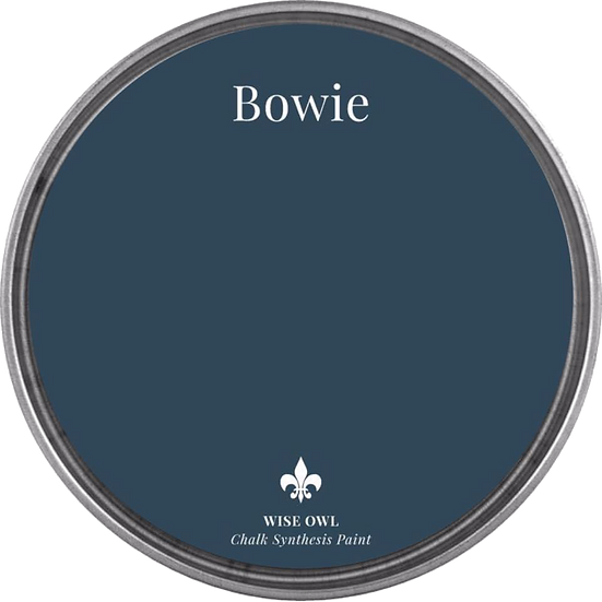 Chalk Synthesis Paint -Bowie