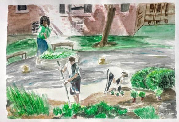 Coummunity Garden : Hyde Park Community Series