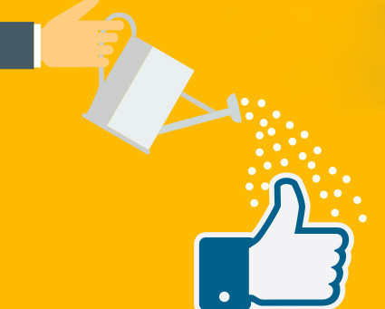 Top 5 Best Killer Ideas And Ways To Improve Your Facebook Organic Reach
