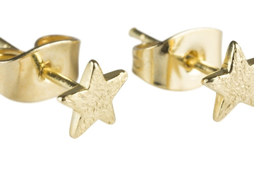 Betty Bogaers E409 G Gold Small Star Stud