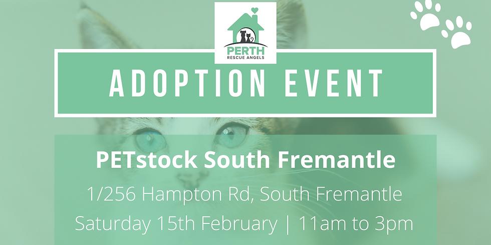 PetStock National Adoption Day   South Fremantle