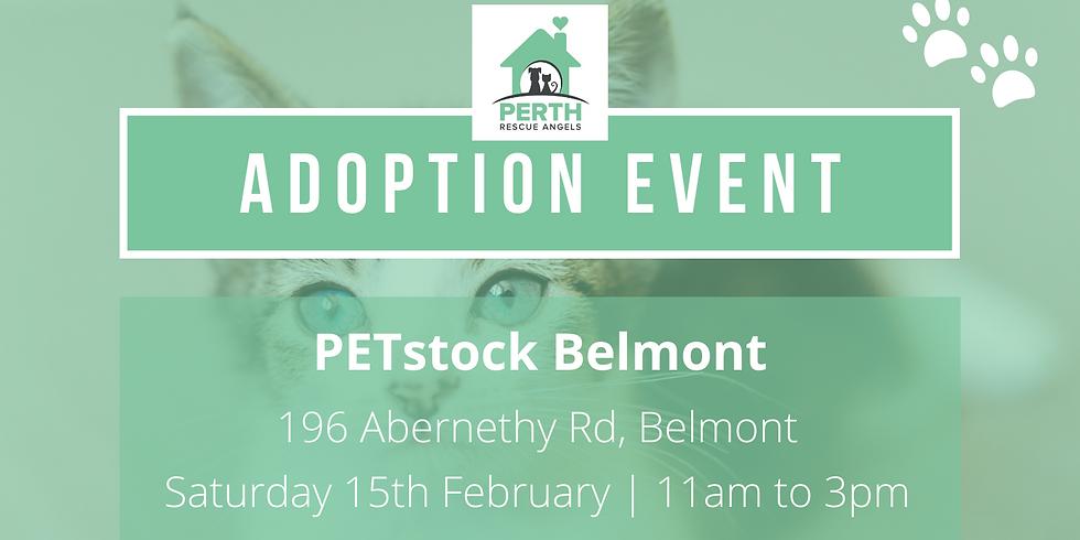 PetStock National Adoption Day | Belmont