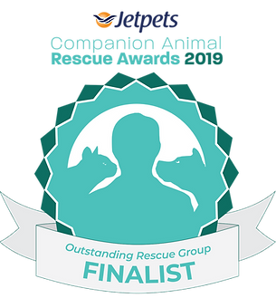 thumbnail_Outstanding Rescue Group Final
