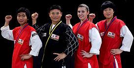 authentic martial arts