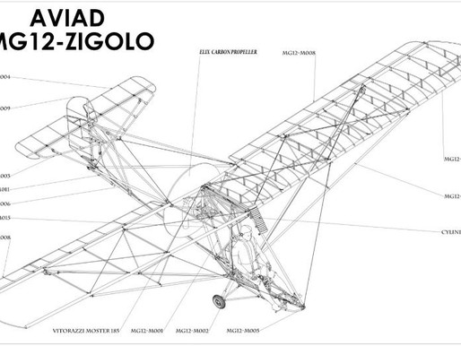 Zigolo MG12 to Zigolo MG20