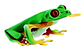 frog (1) (1).png