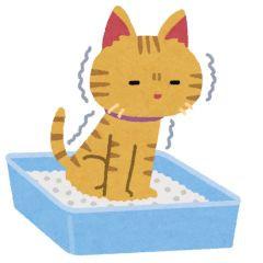ペット 猫 ネコ トイレ リフォーム 清水 静岡市 エアコン キッチン